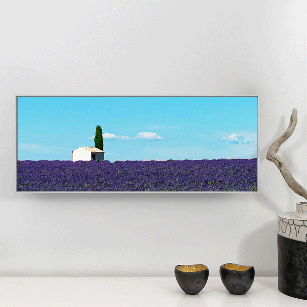 fmedium photo d'art lavande valensole