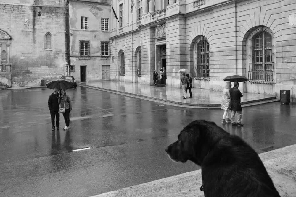 Robert Hale Arles photographie