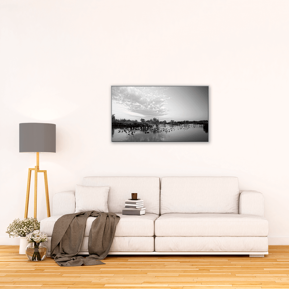 photographie camargue flamants fgrand