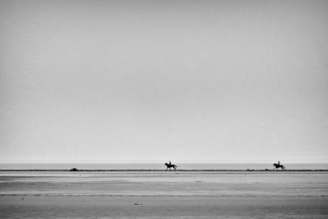 Sébastien Rollandin Camargue Photographie