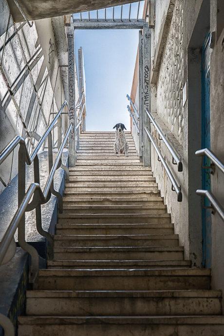 Jean-Paul Cotte Photographie d'art Marseille