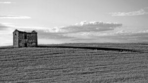Robert Hale Photographie Valensole Provence