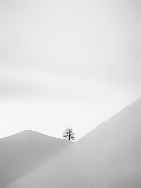 Photographie Laurent Gayte - Col de Larche